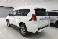 Bán Toyota Land Cruiser Prado VX 2.7L đời 2019, màu trắng, nhập khẩu giá 2 tỷ 340 tr tại Vĩnh Phúc