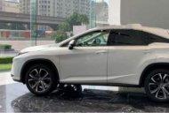 Cần bán Lexus RX 300 2019, màu trắng giá 3 tỷ 40 tr tại Hà Nội
