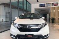 Bán xe Honda CR V sản xuất 2019, màu trắng, nhập khẩu giá 983 triệu tại Tp.HCM