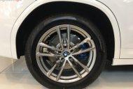 Bán xe BMW X3 xDrive20i đời 2019, màu trắng, nhập khẩu giá 2 tỷ 499 tr tại Tp.HCM