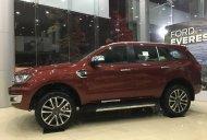 Cần bán Ford Everest năm sản xuất 2019, màu đỏ giá 1 tỷ 316 tr tại Hà Nội