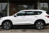 Cần bán xe Hyundai Santa Fe sản xuất 2019, màu trắng, mới 100% giá 995 triệu tại Tp.HCM