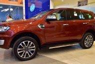 Xe Ford Everest 2019 Giảm 40 Triệu,BHVC,Phim,Lót Sàn giá 999 triệu tại Tp.HCM