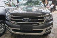 Bán Ford Everest mới 100%, nhập khẩu Thái 2019 giá 999 triệu tại Tp.HCM