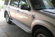 Bán Ford Everest sản xuất năm 2009, màu bạc giá 440 triệu tại Gia Lai