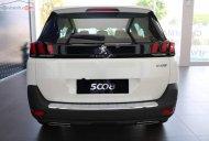 Bán Peugeot 5008 1.6 AT sản xuất 2019, màu trắng giá 1 tỷ 349 tr tại Bến Tre