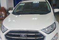 Cần bán xe Ford EcoSport năm 2019, màu trắng, giá 545tr giá 545 triệu tại Điện Biên