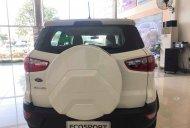 Bán ô tô Ford EcoSport 2019, mới hoàn toàn giá 545 triệu tại Quảng Nam