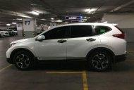 Cần bán xe Honda CR V đời 2019, màu trắng, nhập khẩu giá 1 tỷ 100 tr tại Tp.HCM