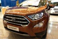 Ford Ecosport 2019 giảm tiền mặt cực khủng, tặng phụ kiện cực nhiều. Hotline: 0332.190066 giá 545 triệu tại Tp.HCM