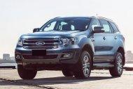 Cần bán Ford Everest đời 2019, xe nhập giá 999 triệu tại Tp.HCM