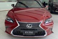 Lexus ES250 Sedan Hạng Sang 2020 giá 2 tỷ 499 tr tại Tp.HCM