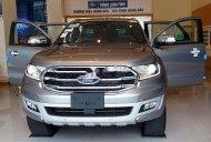 Cần bán Ford Everest Titanium đời 2019, màu bạc, nhập khẩu nguyên chiếc giá 1 tỷ 150 tr tại Lâm Đồng