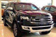 Cần bán Ford Everest năm 2019, màu đen, xe nhập giá 1 tỷ 140 tr tại Lâm Đồng