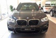 Bán xe BMW X3 đời 2019 màu đen, nhập khẩu chính hãng mới 100%, giảm tiền mặt, hỗ trợ trả góp 85%. giá 2 tỷ 499 tr tại Tp.HCM