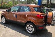 Cần bán xe Ford EcoSport sản xuất 2019, màu nâu giá 505 triệu tại BR-Vũng Tàu