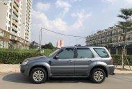 Bán xe Ford Escape XLT AT năm sản xuất 2010, màu xám số tự động giá 395 triệu tại Tp.HCM