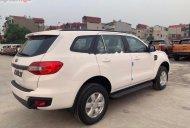 Cần bán xe Ford Everest Ambiente 2.0 4x2 MT 2019, màu trắng, nhập khẩu nguyên chiếc giá 939 triệu tại Tây Ninh