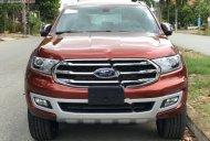 Bán xe Ford Everest Titanium 2.0L 4x2 AT năm sản xuất 2019, màu đỏ, nhập khẩu nguyên chiếc giá 1 tỷ 117 tr tại Cần Thơ