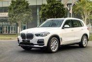BMW Phú Nhuận - Bán xe chính hãng BMW X5 Xdrive 40i đời 2019, màu trắng giá 4 tỷ 299 tr tại Tp.HCM