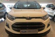 Cần bán lại xe Ford EcoSport Titanium 1.5L AT 2017, màu trắng xe còn mới lắm giá 525 triệu tại Tp.HCM