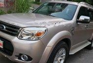 Bán Ford Everest Limited 2.5 AT năm sản xuất 2014, màu hồng, số tự động  giá 629 triệu tại Tp.HCM