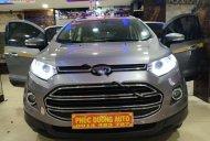 Bán ô tô Ford EcoSport năm 2016, màu xám chính chủ giá 430 triệu tại Đắk Lắk