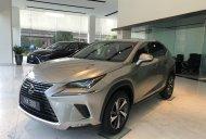 Bán giảm giá cuối năm chiếc xe Lexus NX300, sản xuất 2019, màu bạc, nhập khẩu nguyên chiếc giá 2 tỷ 510 tr tại Hà Nội