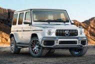Ưu đãi đón tết chiếc xe Mercedes-Benz G63 AMG, sản xuất 2019, màu bạc, xe nhập khẩu nguyên chiếc giá 11 tỷ 866 tr tại Tp.HCM