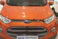 Cần bán Ford EcoSport Titanium 1.5L AT sản xuất 2017, giá tốt giá 505 triệu tại Tp.HCM