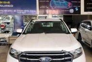 Cần bán lại xe Ford Everest năm 2018, màu trắng, nhập khẩu, 889tr giá 889 triệu tại Lâm Đồng