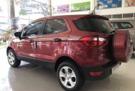 Bán xe Ford EcoSport AT sản xuất năm 2019, màu đỏ số tự động giá 509 triệu tại Quảng Ngãi