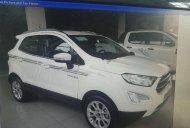 Bán xe Ford EcoSport đời 2019, màu trắng, nhập khẩu nguyên chiếc, giá 650tr giá 650 triệu tại Thái Bình