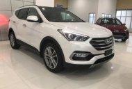 Giảm tiền mặt + Tặng phụ kiện chính hãng khi mua chiếc Hyundai Santa Fe 2.4 máy xăng tiêu chuẩn giá 995 triệu tại Long An