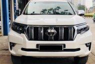 Bán ô tô Toyota Prado đời 2010, màu trắng, nhập khẩu giá 1 tỷ 100 tr tại Hà Nội