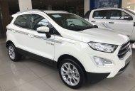 Bán Ford EcoSport 1.5 AT Trend năm sản xuất 2019, màu đen, xe lướt, giá rẻ giá 560 triệu tại Cần Thơ