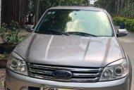 Cần bán gấp Ford Escape đời 2010, màu xám giá 335 triệu tại Tp.HCM