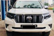 Bán Toyota Prado năm sản xuất 2010, màu trắng, nhập khẩu giá 1 tỷ 120 tr tại Hà Nội
