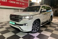 Bán Toyota Land Cruiser VXS 4.6 đời 2017, màu trắng, nhập khẩu Trung Đông giá 4 tỷ 580 tr tại Hà Nội