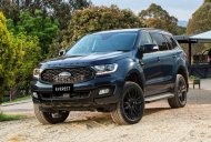 Bán xe Ford Everest Titanium 4WD đời 2020, màu đen, tặng phụ kiện chính hãng giá 1 tỷ 404 tr tại Tây Ninh