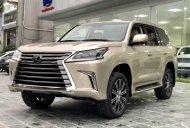 Cần bán xe Lexus LX 570 MBS sản xuất năm 2020, màu trắng, nhập khẩu giá 10 tỷ 333 tr tại Bình Dương