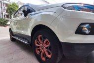 Xe Ford EcoSport năm sản xuất 2017, màu trắng giá 490 triệu tại Tp.HCM
