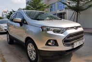 Bán Ford EcoSport sản xuất 2016, màu bạc giá 458 triệu tại Tp.HCM