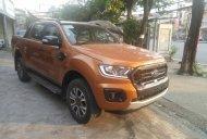 Xe mới tinh - hot hot - nhập khẩu - Ranger Wildtrak 2.0L Bi Turbo 4x4 - VN - 850tr giá 850 triệu tại Hà Nội