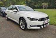 Sales toàn quốc, Volkswagen khuyến mãi lên đến 177tr kèm nhiều ưu đãi hấp dẫn, nhận xe từ 500tr, tháng góp 9.9 triệu giá 1 tỷ 480 tr tại Tp.HCM