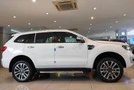 Cần bán xe Ford Everest đời 2021, màu trắng, nhập khẩu giá 1 tỷ 314 tr tại Hà Nội